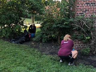 THANK YOU - Thank you to our Life Skills students for helping to clean up the weeds around our building this week!
